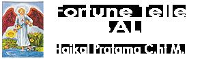 fortunetellerbali logo,.